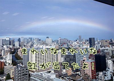 虹きれい!