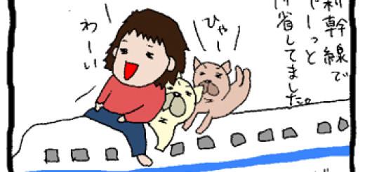 新幹線で犬と一緒に帰省