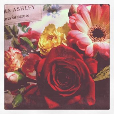 お土産でお花ももらった!