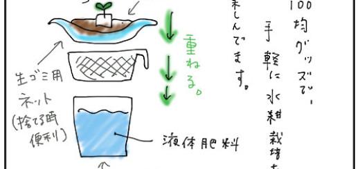簡易水耕栽培