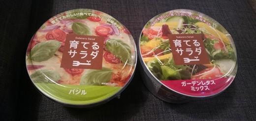 育てるサラダ2種類