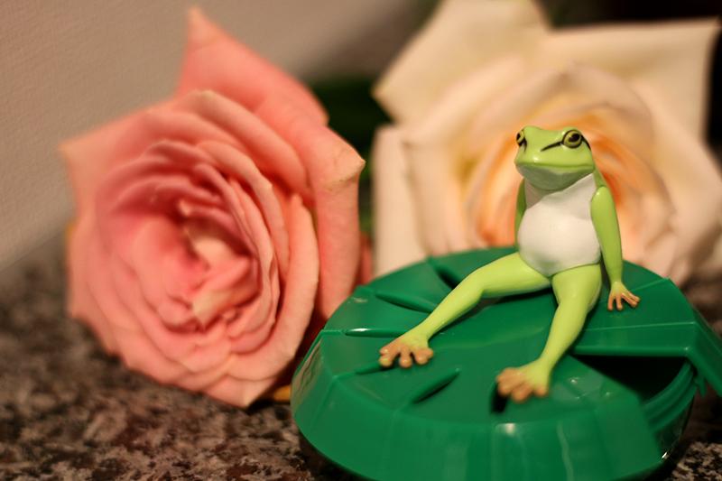 我が家にも蛙田主任にご就任いただきました。