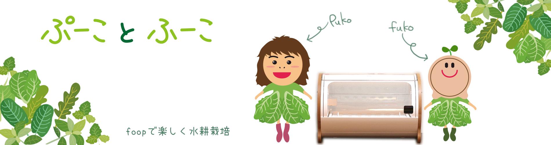 ぷーことふーこ