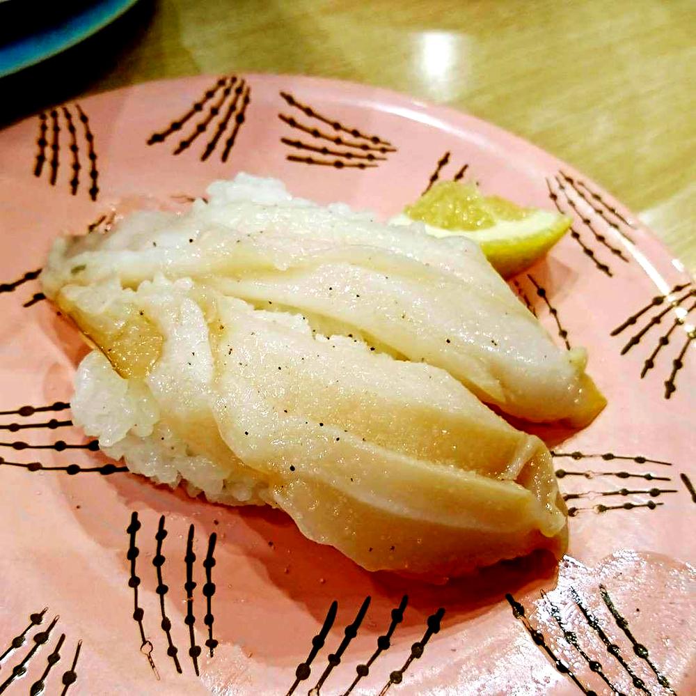 トリトンツブ貝