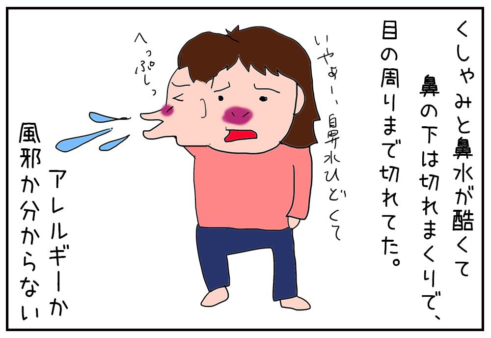 鼻垂れぷーこと鼻水吸引器(自動)