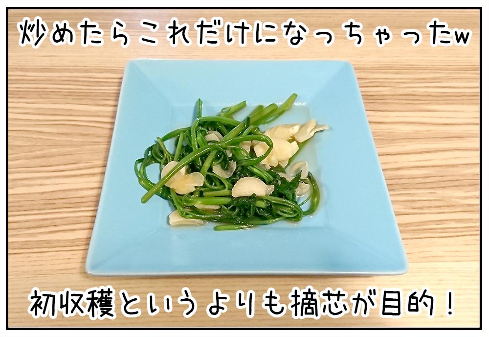 空芯菜のガーリック炒め