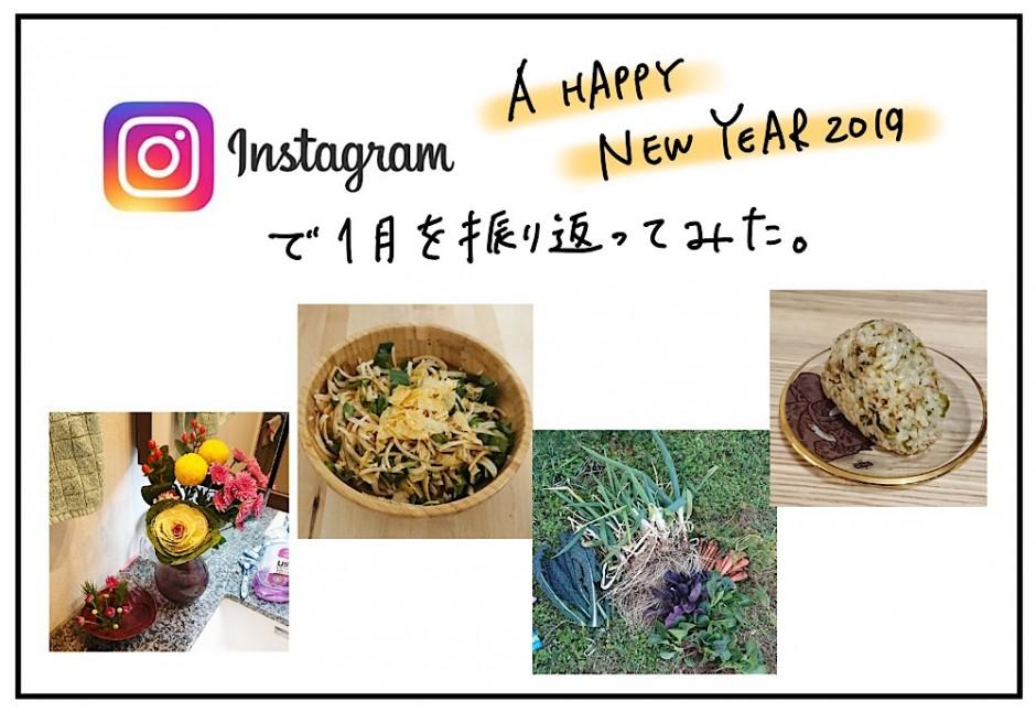 Instagramで振り返る2019年1月