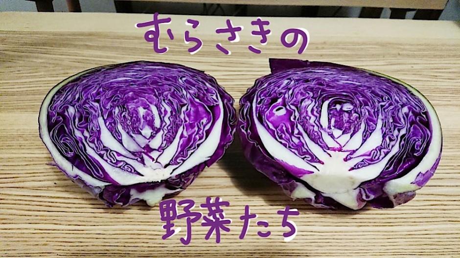 紫の野菜たち
